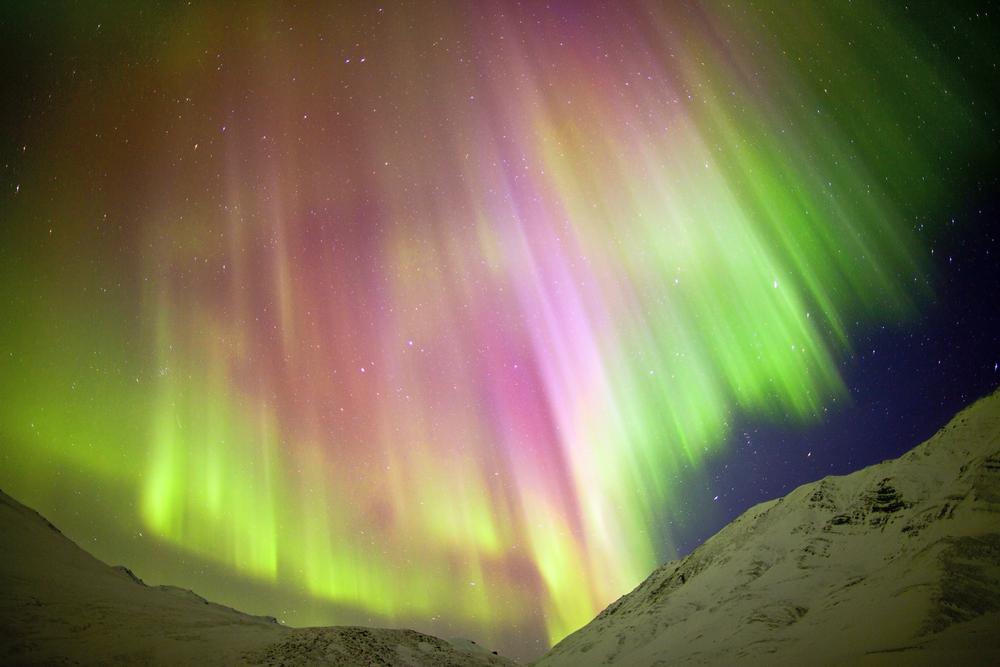 Foto: Dhanachote Vongprasert - Shutterstock.com
