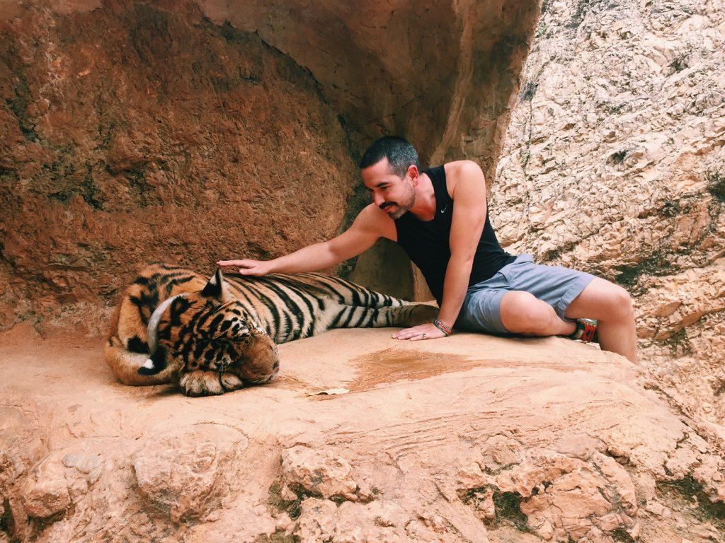 Se eu passei 15 segundos com esse tigre foi muito!