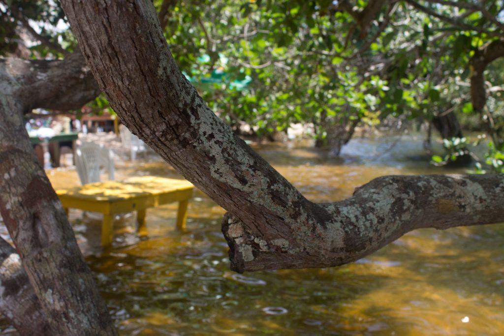 Aqui, numa das ilhas a 10 munutos de barco da Vila. As mesas são dispostas dentro d'água. Você curte a praia, que nessa época tem uma incidência maior de arraias -- o bicho é pequeno mas, dizem, faz um estrago. Crédito: Renata Helena Rodrigues
