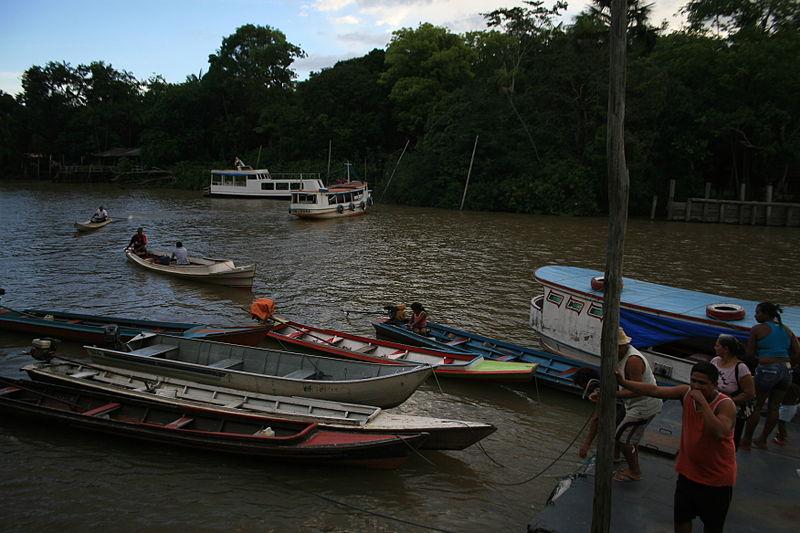 Área_de_Proteção_Ambiental_(APA)_Ilha_do_Combu_-_Belém-Pará_-_Brasil_03