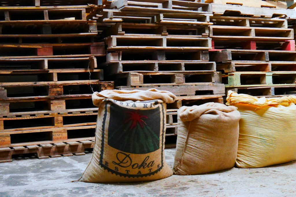 E depois vai para as sacas. A maior e melhor parte da produção vai para países como a Itália. Na Costa Rica, como na maior parte dos países latinos americanos, o café normal do dia a dia é de qualidade muito inferior ao exportado.