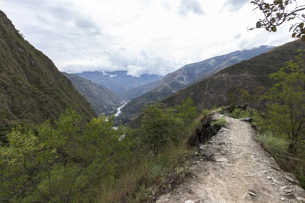 Trilha Inca Jungle 6