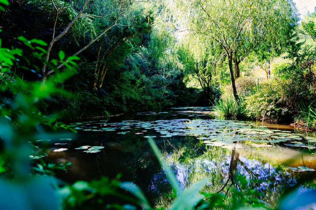 Chichu Garden, inspirado nos jardins de Monte. Foto: Ola Persson