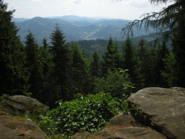 Floresta Negra, onde os contos de fadas acontecem