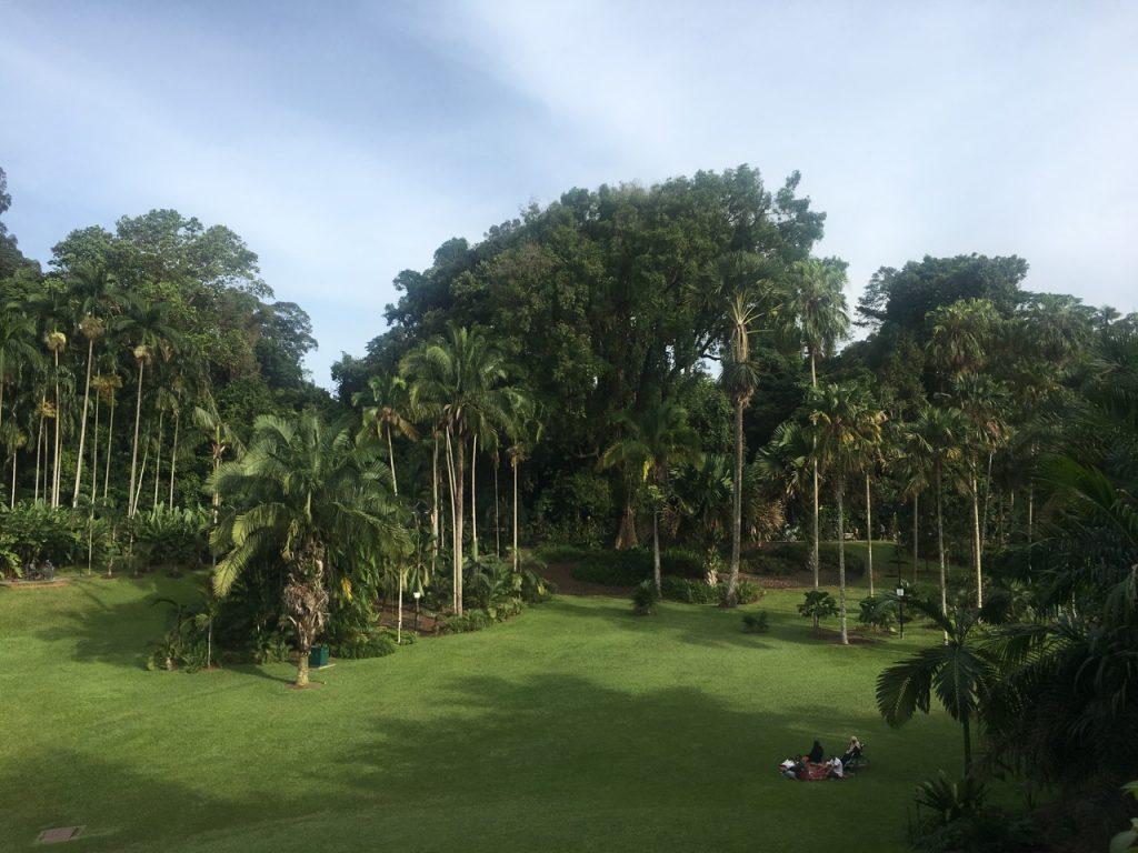 O Jardim Botânico de Singapura, que coleciona diversos prêmios, e tem uma orquidário de cair o queixo. Foto: Lalai Persson