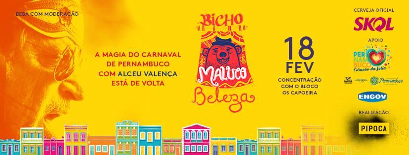 bloco_bicho_maluco_beleza