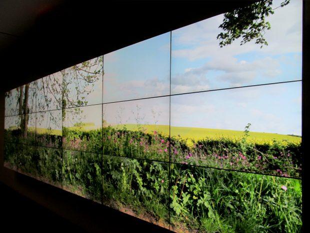 David Hockney Seven Yorkshire Landscape Videos, 2011. Fotografia: rocor. Flickr.