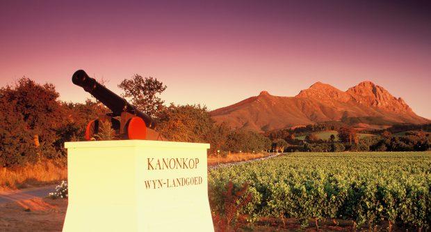 Entrada da vinícola Kanonkop, África do Sul - foto: Chasing the Vine