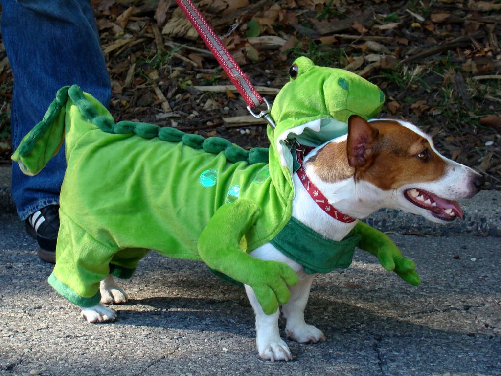 Fantasia de dinossauro