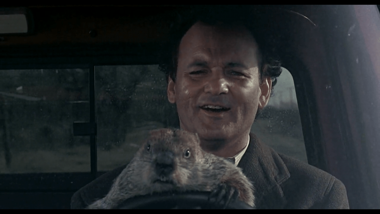dia da marmota, groundhog day, bill murray